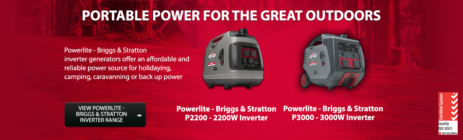 Briggs & Stratton Inverters